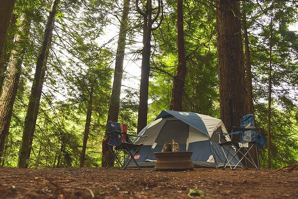 Campground Report Card