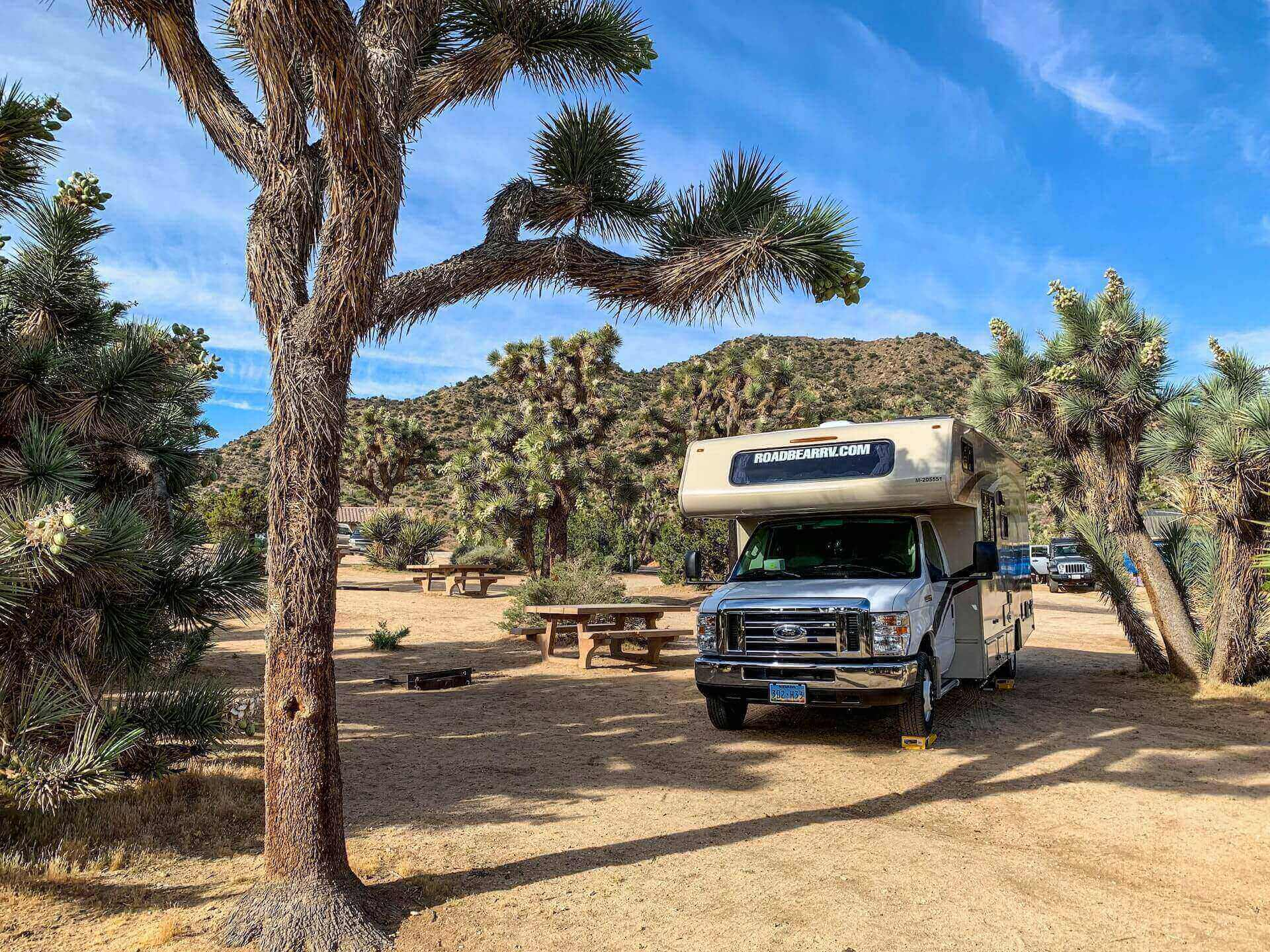 5 Challenges You'll Face Without an RV Park Management Software